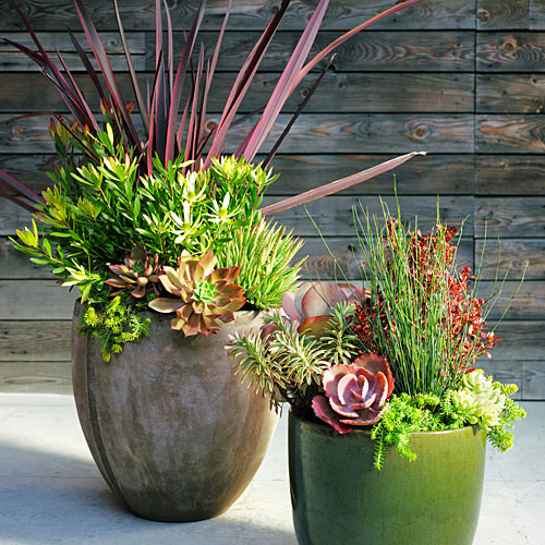 Cover/Succulent containers from Flora Grubb; Apr'13